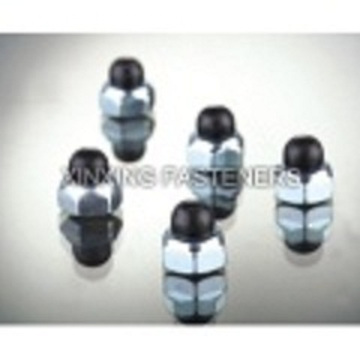 Stainless Steel Nylon Cap Nuts